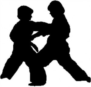 bay-city-karate-tae-kwon-do